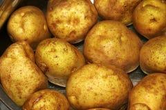 Whote Kartoffeln Lizenzfreies Stockfoto