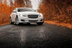 Whtie samochodu luksusowy pobyt na mokrej asfaltowej drodze przy jesienią zdjęcie royalty free