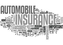 Why Is Auto Insurance Important Word Cloud Royalty Free Stock Photography