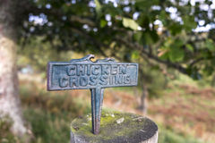 Why did the chicken cross the road? stock photos