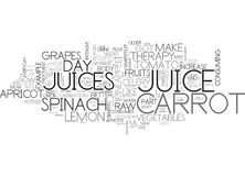 Why Do You Need Raw Juice Therapy Word Cloud Royalty Free Stock Photography