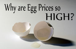 Why are Egg Prices so HIGH with Broken Egg shell background Royalty Free Stock Photos