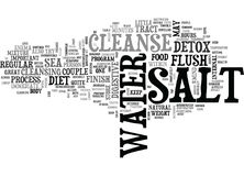 Why Finish Your Detox With A Salt Water Cleanse Word Cloud. WHY FINISH YOUR DETOX WITH A SALT WATER CLEANSE TEXT WORD CLOUD CONCEPT Royalty Free Stock Photo