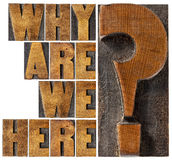 Why are we here question. Why are we here philosophical and spiritual question - isolated word abstract in letterpress wood type blocks stock photos
