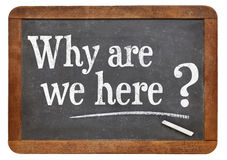 Why are we here question. On a vintage blackboard isolated on white Stock Images