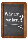 Why are we here question Royalty Free Stock Image
