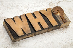 Why question in wood type Stock Photo