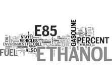 Why Should I Use E Ethanol Word Cloud Royalty Free Stock Images