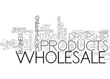 Why Are Wholesale Products Dropshipped Word Cloud Stock Photography