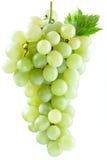 wiązek białych winogron Fotografia Royalty Free