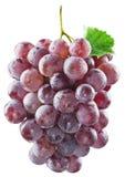 wiązek czerwonych winogron Ścinek ścieżki Obraz Royalty Free