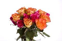 wiązek róże obrazy stock