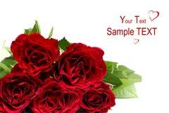 wiązek róże Zdjęcie Royalty Free