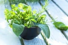 wiązek ziele Zdjęcie Stock