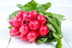 Wiązka świeże organicznie czerwone rzodkwie Fotografia Royalty Free