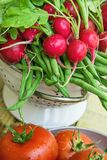 Wiązka Świeże Organicznie Czerwone rzodkwie z Wodnymi kroplami w Colander pomidorach na Wietrzejącym drewno ogródu stole Obraz Stock