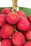 Wiązka świeży lychee z liściem Fotografia Royalty Free