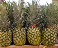Wiązka ananasy jak widzieć na półce sklepowej Obraz Royalty Free