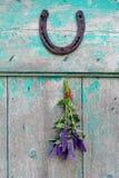 Wiązka anyżowy hizop & x28; Agastache foeniculum& x29; z podkową Fotografia Stock