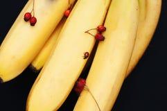 Wiązka banany na czarnym tle Świeży organicznie banan, Świezi banany na kuchennym stole Obrazy Royalty Free