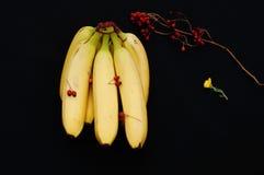 Wiązka banany na czarnym tle Świeży organicznie banan, Świezi banany na kuchennym stole Zdjęcie Royalty Free