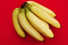 Wiązka banany na czerwonym tle Świeży organicznie banan, Świezi banany na kuchennym stole Fotografia Stock