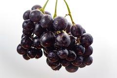 Wiązka czarny winogrono, słodki owocowy deser Obrazy Royalty Free