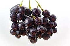 Wiązka czarny winogrono, słodki owocowy deser Zdjęcia Royalty Free