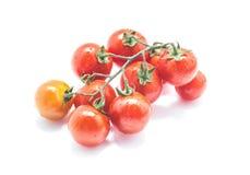 Wiązka czereśniowi pomidory odizolowywający na białym tle Fotografia Royalty Free