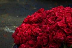 Wiązka czerwieni róża Obrazy Stock