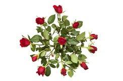 Wiązka czerwone róże Fotografia Royalty Free