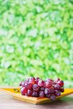 Wiązka czerwoni winogrona na żółtym pomarańcze talerzu przeciw zielonemu plamy tłu, obraz stock