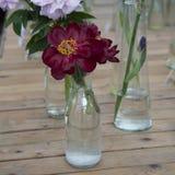 Wiązka czerwony Sarah bernhardt ciie out peonie w turkusowej szklanej butelce na białym drewnianym stole Obrazy Royalty Free