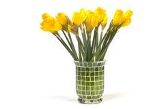 Wiązka daffodils w wazie odizolowywającej na bielu Obraz Stock