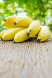 Wiązka dojrzali banany na drewnianej desce z plamy zieleni liścia backg Obraz Royalty Free