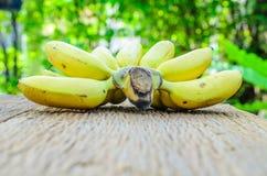 Wiązka dojrzali banany na drewnianej desce z plamy zieleni liściem Zdjęcie Stock