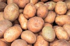 Wiązka kartoflany zbliżenie wizerunek Brown i żółty warzywo obrazek zdjęcie royalty free