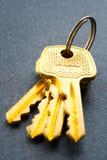 wiązka klucze Fotografia Royalty Free