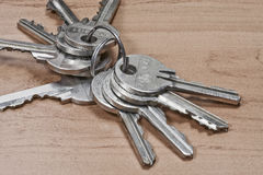 wiązka klucze Fotografia Stock