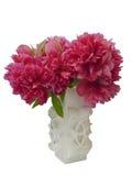 wiązka kwitnie peoni wazę zdjęcie royalty free