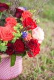 wiązka kwitnie róże Fotografia Royalty Free