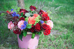 wiązka kwitnie róże Zdjęcia Royalty Free