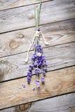Wiązka lawenda kwitnie z ślimaczkiem na starym drewno stole Obraz Stock