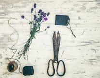 Wiązka lawenda, nożyce i sznur, zdjęcie stock