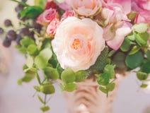 Wiązka lekka lato miękka część kwitnie z zielonymi liśćmi Natury pogodny tło Odgórny widok Fotografia Royalty Free