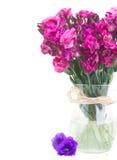 Wiązka mauve eustoma kwiaty Fotografia Royalty Free