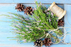 Wiązka naturalny dziki Erica, wrzos/dekorował z jutowym łękiem z suchym piny rożkiem na rocznika drewnianym tle Obraz Royalty Free