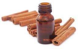 Wiązka niektóre świeży aromatyczny cynamon z istotnym olejem fotografia stock