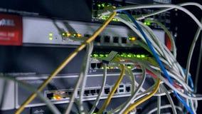 Wiązka wiele łata sznury czopował w sieci zmianę 4K zbiory wideo