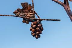 Wiązka winogrona brąz na nieba tle Obraz Royalty Free